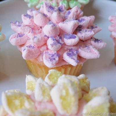 Countdown to Spring Party… Mum Cupcakes