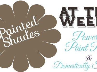 139th Power of Paint Party… Painted Shades