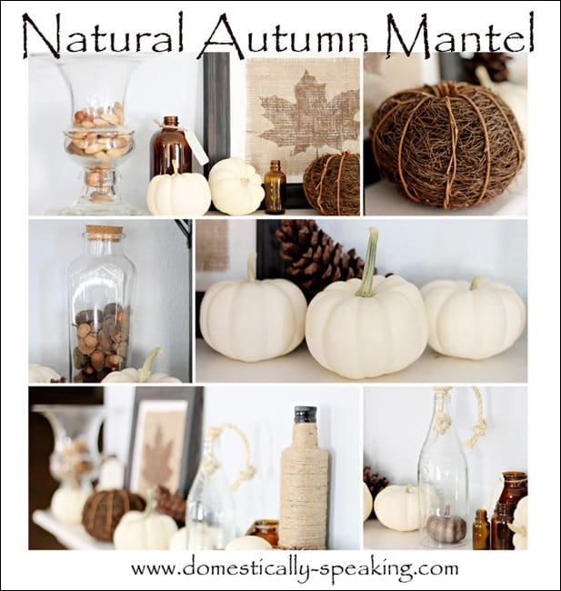 white pumpkins, pinecones, acorns