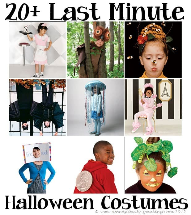 20 last minutes costume ideas domestically speaking for Last minute halloween costumes for females