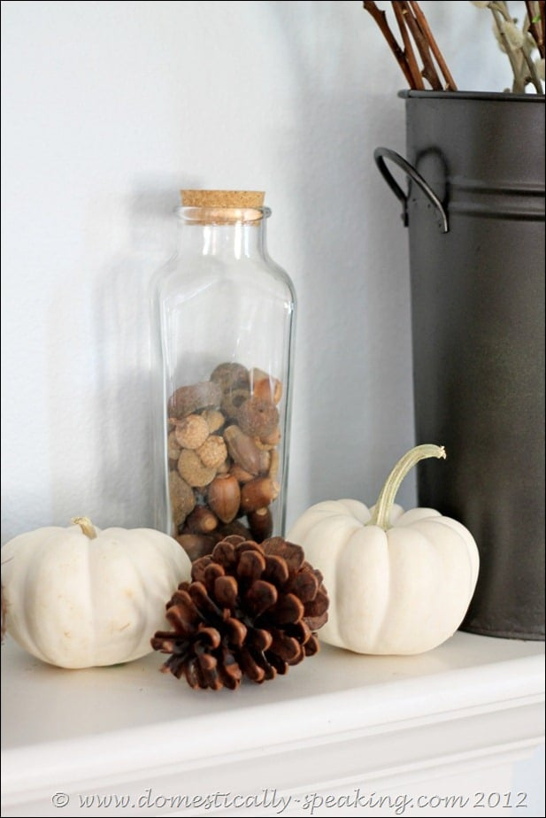 white pumpkins, acorns, pinecones, fall