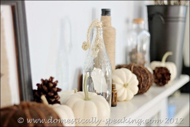 pinecones, white pumpkins, acorn, fall