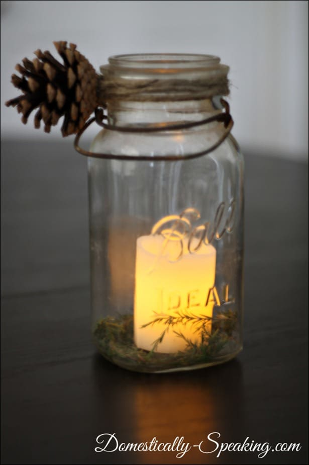 winter, pine cone