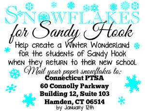 Snowflakes for Sandy