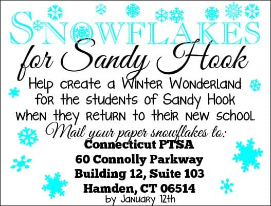 Sandy Hook Snowflakes