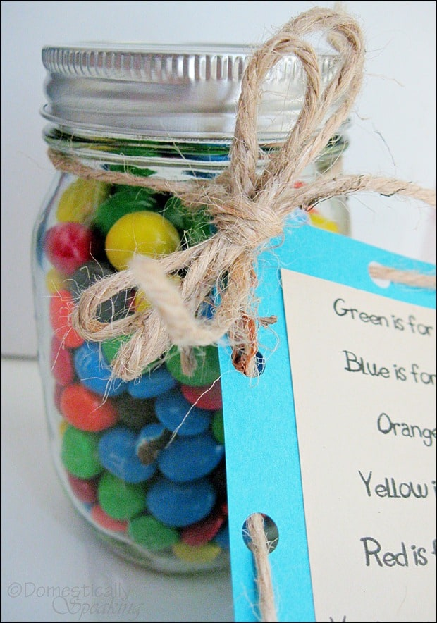 Domestically Speaking:  Great Teacher Gift Idea