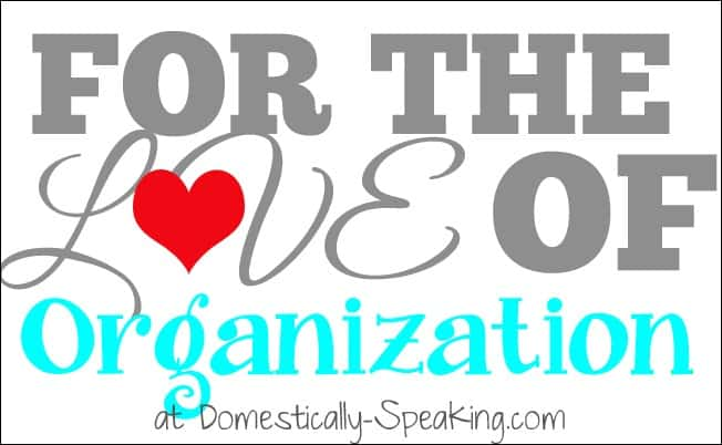 Domestically Speaking:  Lots of great organization ideas