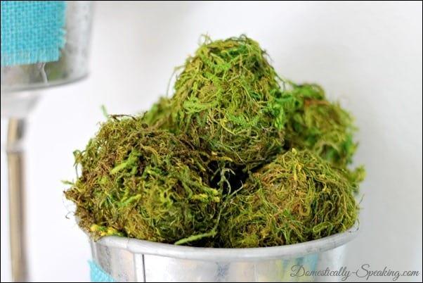 moss eggs, moss, spring, mantel, twine, galvanized metal
