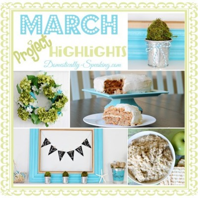 March 2013 Highlights