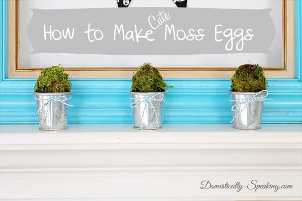moss, eggs, galvanized, buckets, baker's twine, plastic