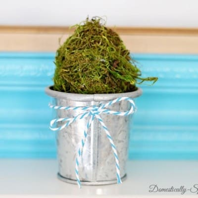 How to Make Moss Eggs