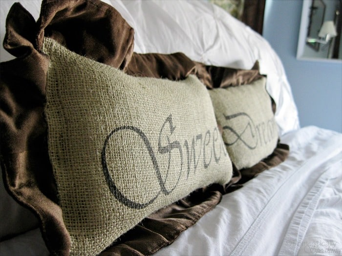 Sweet Dreams Burlap and Velvet Pillows @ Domestically-Speaking.com