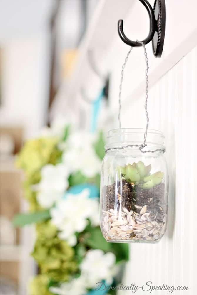 mason jar, succulents, seashells, summer, hanging