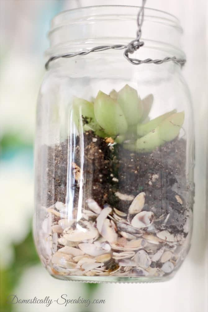 Fill a mason jar with mini shells, potting soil and a succulent
