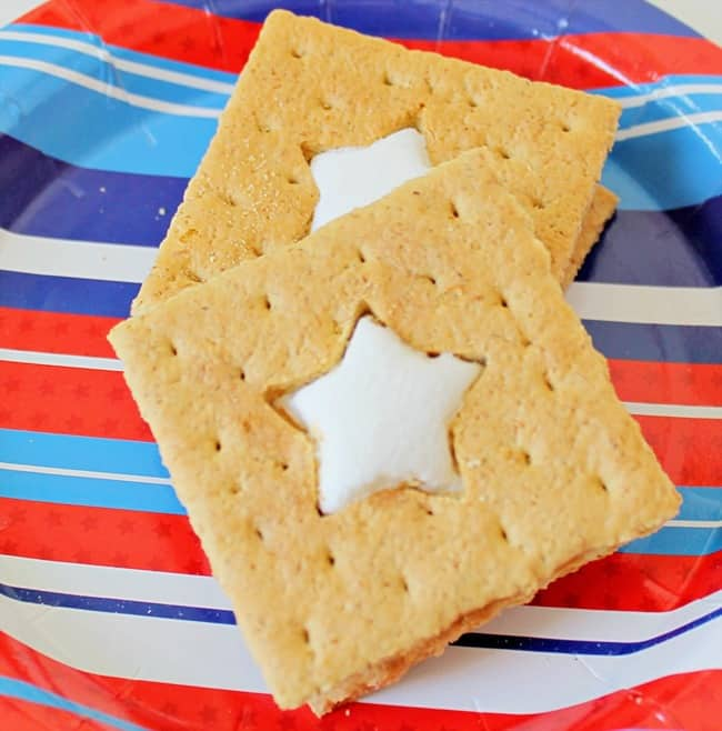 Patriotic S'mores @ Domestically Speaking