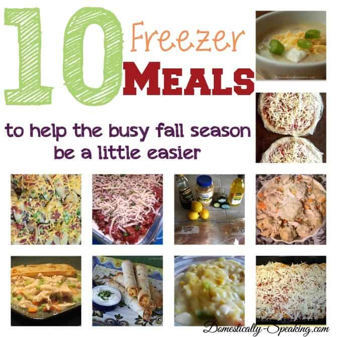 10 Freezer Meals for the busy fall schedule