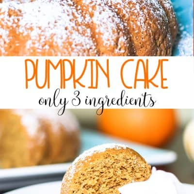 3 Ingredient Pumpkin Cake with Greek Yogurt