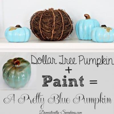 Little Blue Pumpkins