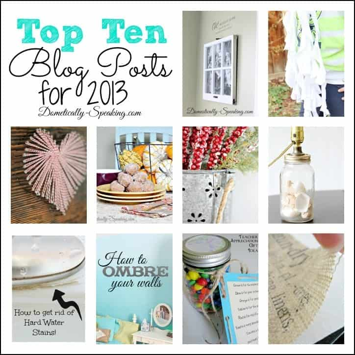 Domestically Speaking's Top Ten Posts from 2013