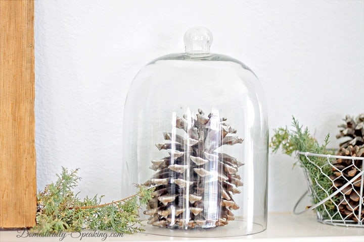 Looking Glass Spray Painted Pinecone Cloche ~ Rustic Glam Mantel