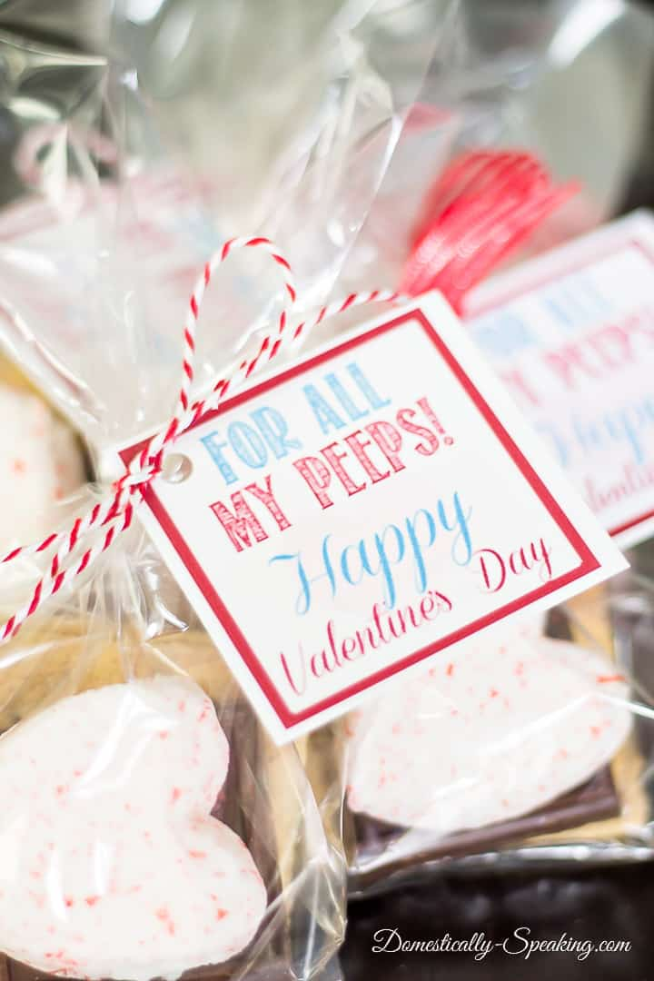 Valentine Smores Printable | For all my Peeps! | Cute free printable with instructions on using Valentine Peeps for a gift bag