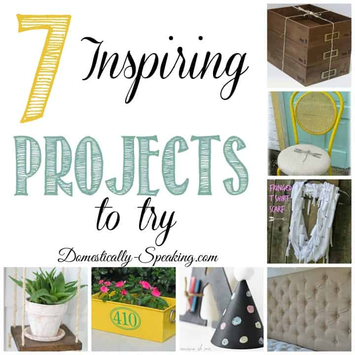 7 Inspiring Projects I want to Try!!!