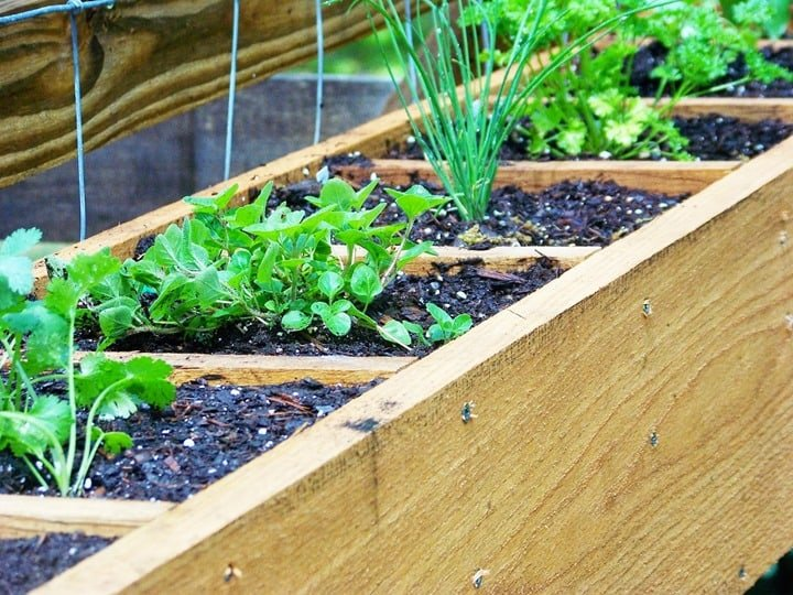 DIY Herb Planter from Three Dog Farm House