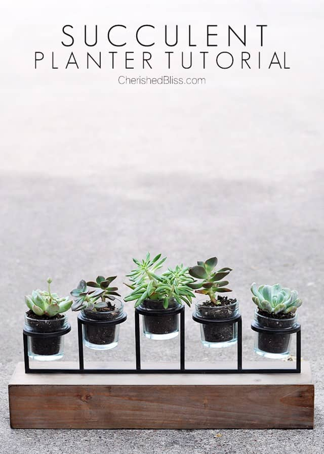 Succulent Planter from Candleholder at Cherished Bliss