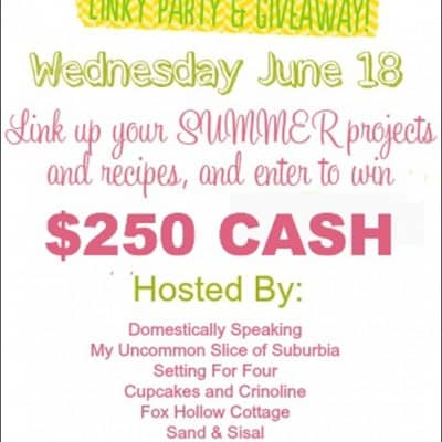 Fun in the Sun Linky Party and $250 Giveaway