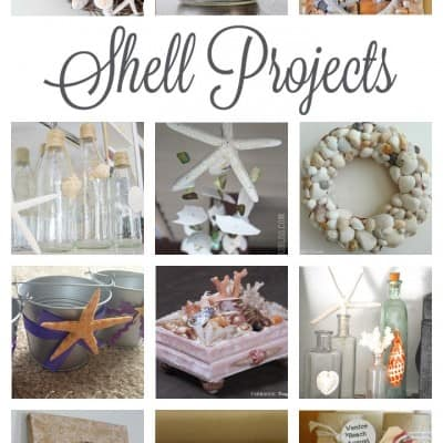 DIY Seashell Projects