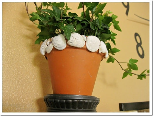 Shell Pots are a great way add some summer to your home