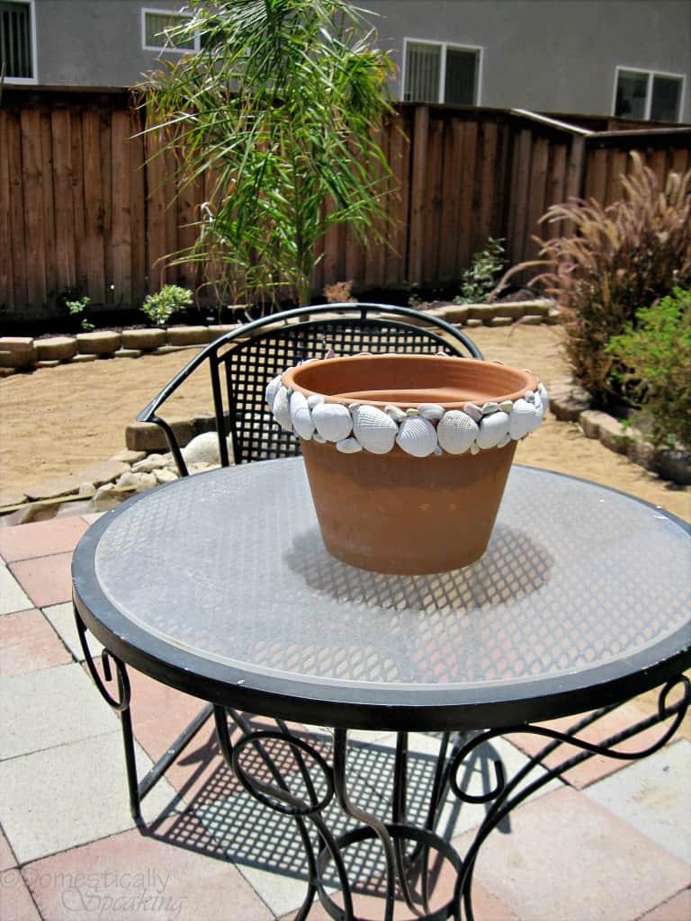 shell pot 3
