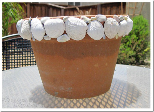 Large Shell Trimmed Pot