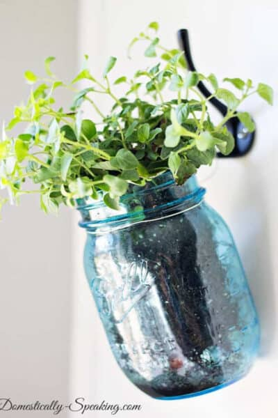 DIY Hanging Herbs in a gorgeous Vintage Blue Mason Jars