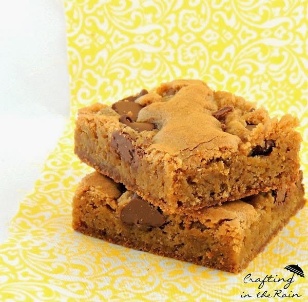 Blonde Brownies from Crafting in the Rain