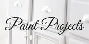 Paint Project Gallery