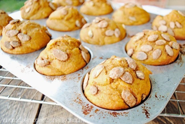 Praline Pumpkin Seed Muffins from I Should Be Mopping the Floor