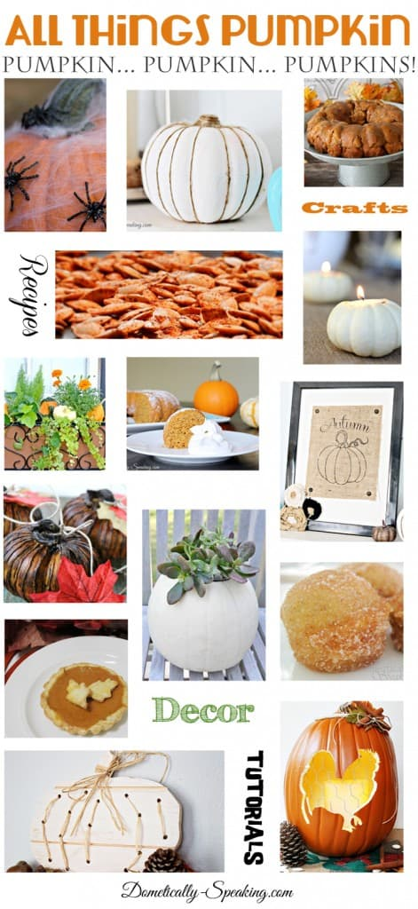 All Things Pumpkin 50+ Pumpkin Crafts Recipes Decor and More