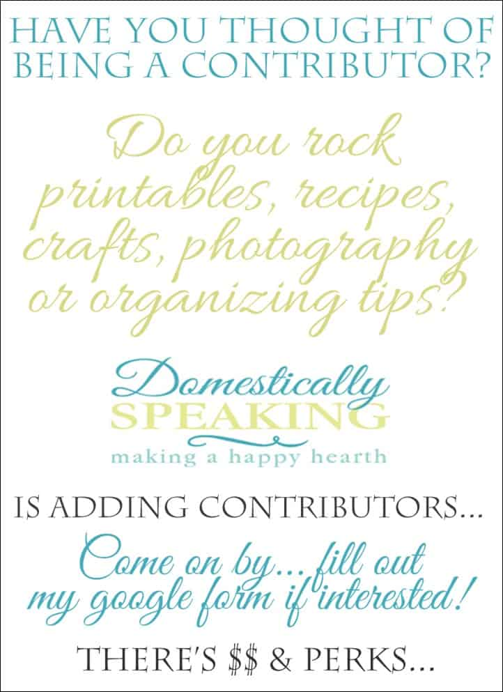 Contributor Call for Domestically Speaking