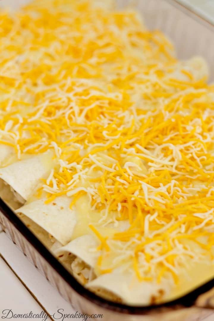 Layers of White Enchiladas loaded with mexican cheese