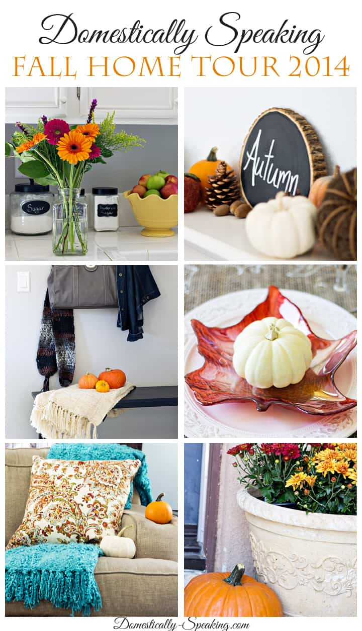 Domestically Speaking 2014 Fall Home Tour