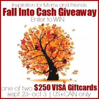 Fall into CASH Giveaway…Giving away Two $250 VISA gift cards