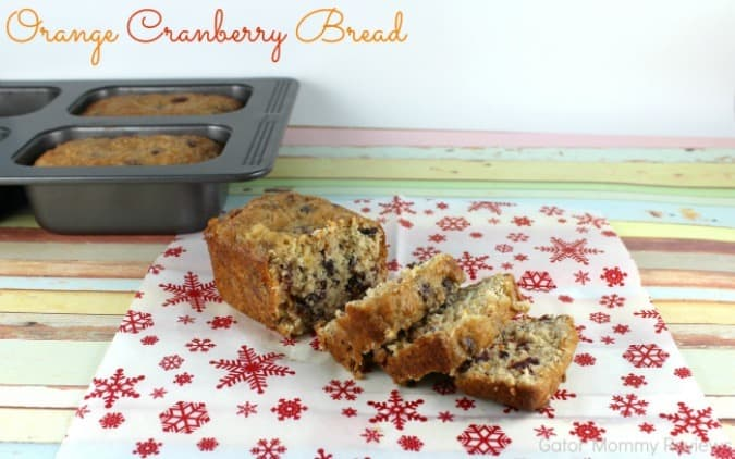 Orange Cranberry Bread from Gator Mommy Reviews