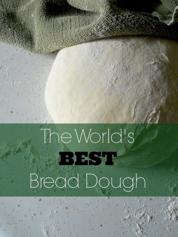 World's Best Bread Dough from Sweet and Savory Food