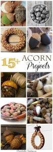 15-Acorn-Projects_thumb.jpg