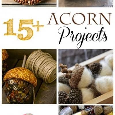 Autumn Acorn Projects