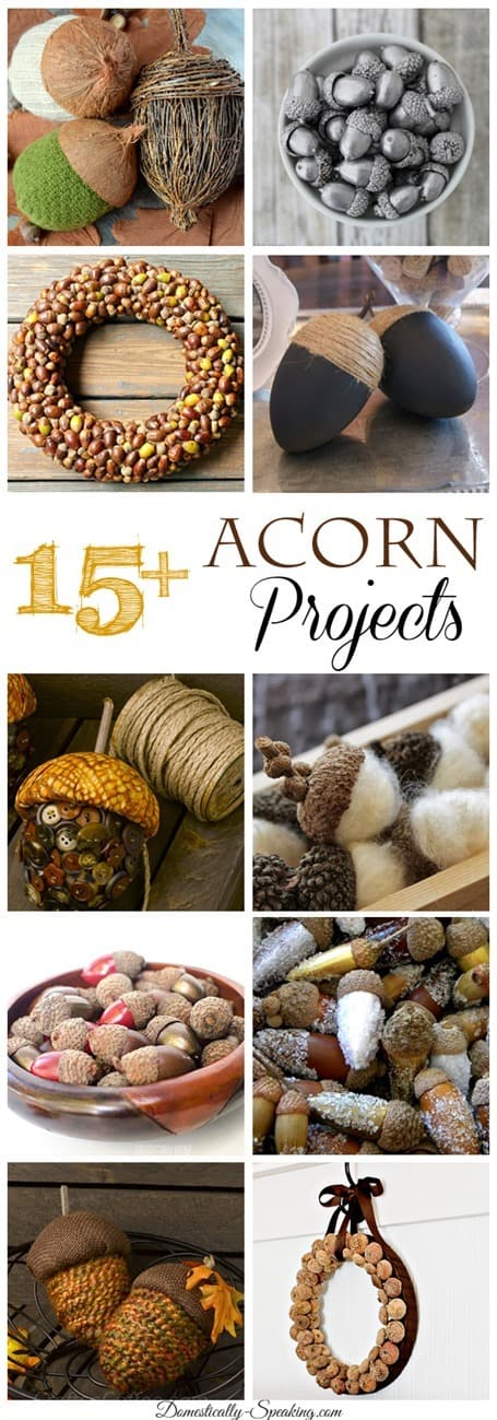 Autumn Acorn Projects Domestically Speaking