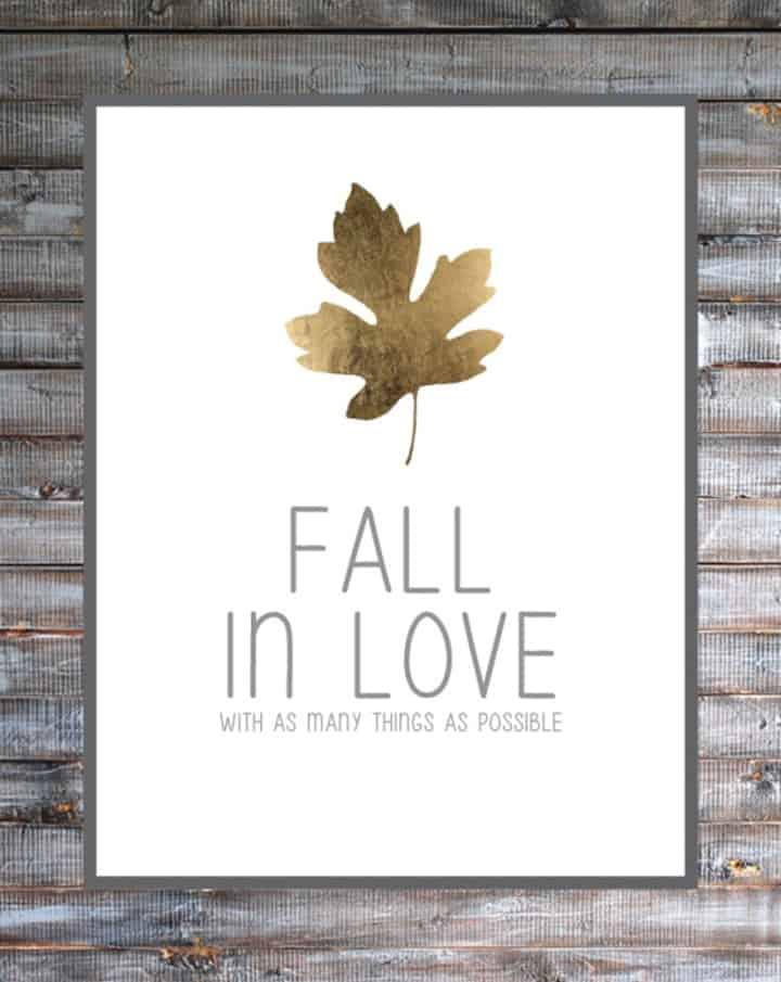 Fall in Love Printable from B Repurposed
