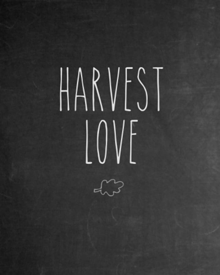 Harvest Love Chalkboard Printable from Dwelling in Happiness