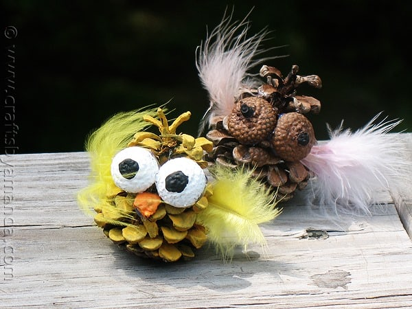Pinecone and Acorn Owls from Crafts by Amanda